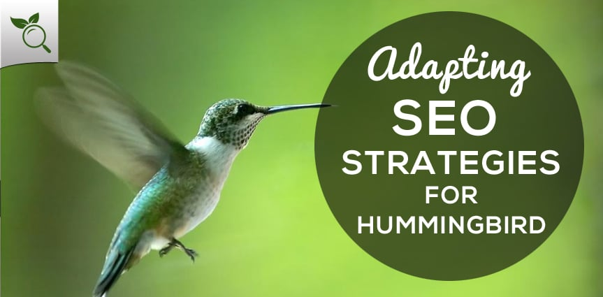 SEO Strategies For Hummingbird