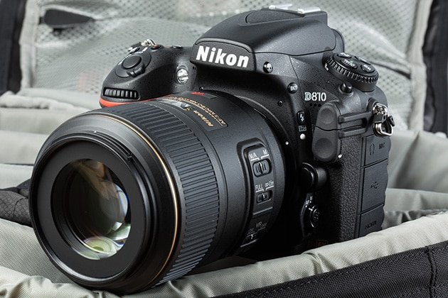 9 Best Entry And Professional Level Dslr Cameras Of 2019