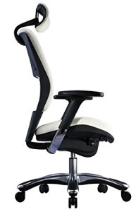Captivating White Ergonomic Office Chair