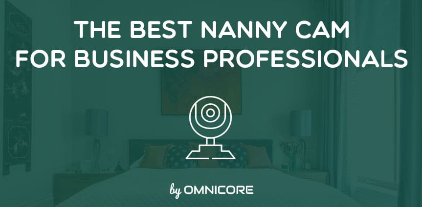 Best Nanny Cam